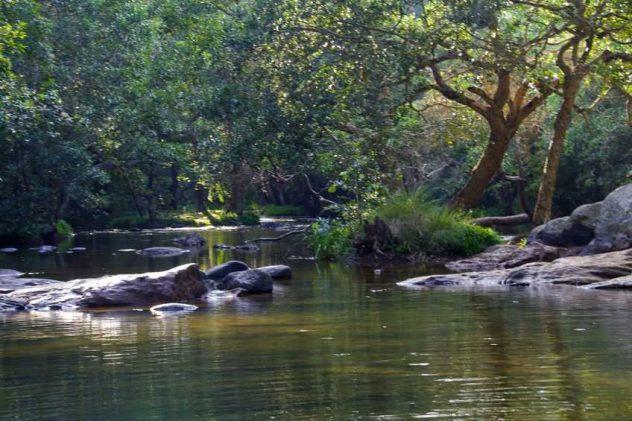 Coorg, Karnataka - Things To Do
