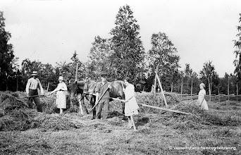 Photo: Sörbylund 1935. Harald Persson, Elma Gustavsson ,Karl Persson, Elsa Persson, Linnéa Karlsson