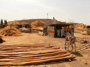 "Photo: Sudanese ""DIY"" store with building material for houses"