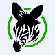 Zebra Cash - earn money from zebra cash Download on Windows