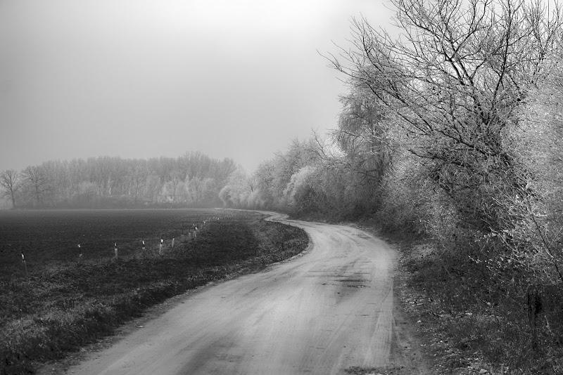Paesaggio invernalle di Fotodiale