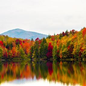 Vermont Fall Colors by Harish Kumar K - Landscapes Waterscapes ( kentpond, season, colors, fall, vermont, killington,  )
