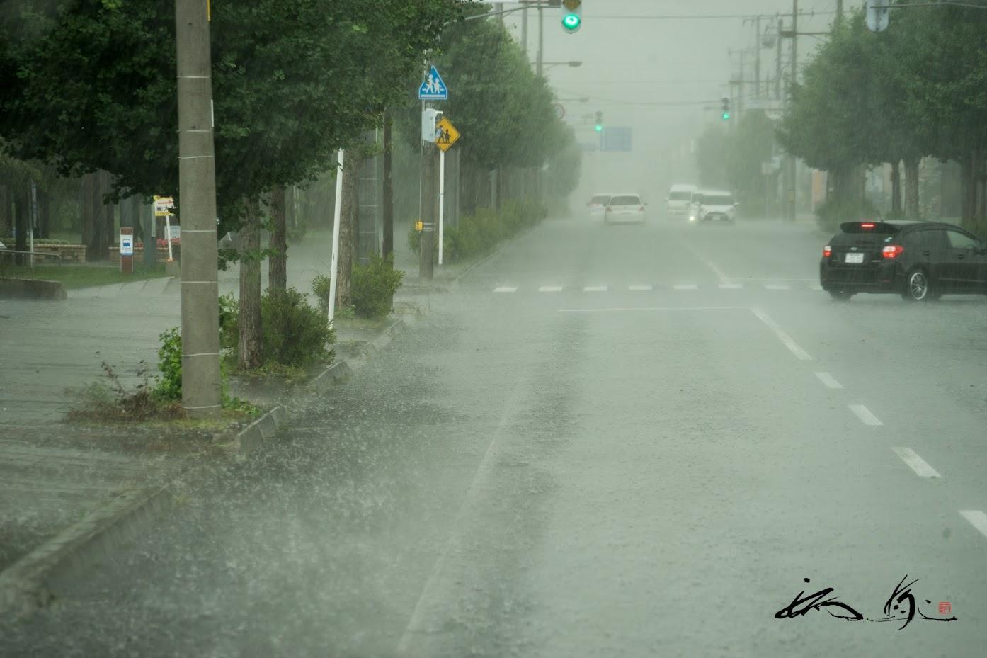 バスの移動中、ゲリラ雨!