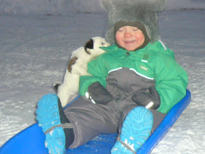 Photo: Bantam Shepherd´s Regina Spektor, 6 weeks, first time outside, -15C degrees. My son almost 1,5 years old.