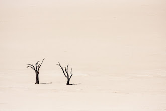 Photo: It's been a while since I've managed to post anything, just haven't been able to find the time lately :( Hopefully I can do a bit better over the next few days...  This photo is another from Sossusvlei, Namibia. The landscape there is unique making it a great place for photography. To get this photo I had to climb halfway up a large sand dune in the sweltering heat, then wait a relaxing 10 minutes until a few tourists who were milling around had moved out of the frame. The trees themselves are probably a bit bigger than you might think at around 5m high.  #TreeTuesday, curated by +Christina Lawrie and +Shannon S. Myers