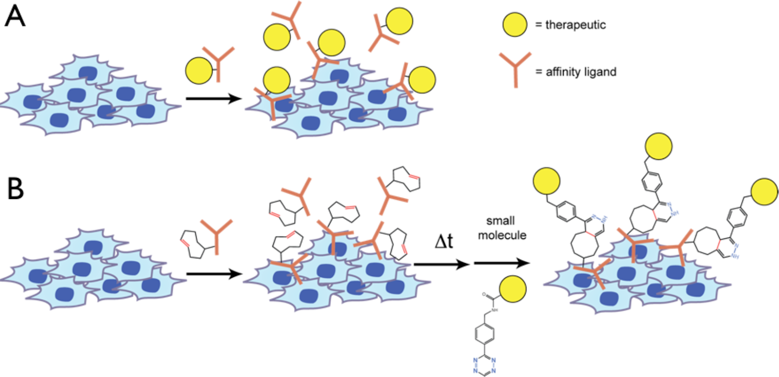 Pre-targeted therapy using bioorthogonal chemistry