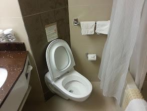 Photo: Toilet of room 055 of ms Ryndam.