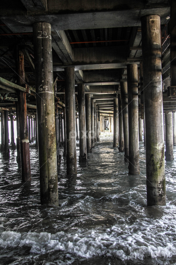 Under the pier by Garry Chisholm - Buildings & Architecture Bridges & Suspended Structures ( garry chisholm, post, sea, pier, pillar )
