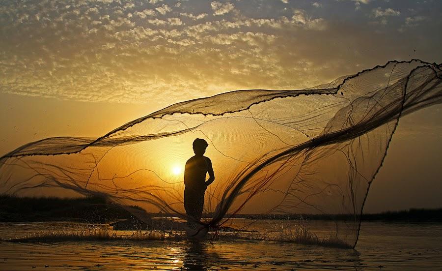 Fisherman by Abdul Rehman - Professional People Agricultural Workers ( cheenab, pakistan, multan, punjab, fisherman, river,  )