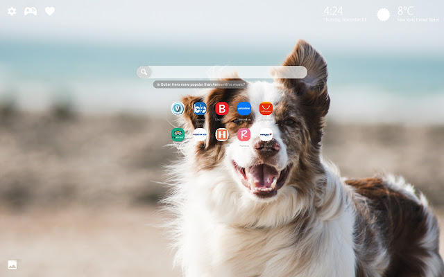 Dog vs Cat Themes New Tab