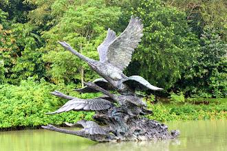 Photo: Year 2 Day 135 - Swan Sculpture in Singapore Botanical Gardens