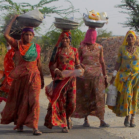 VILLAGE WOMEN by Doug Hilson - People Group/Corporate ( rajasthan, india, women,  )