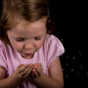 Dandeloin by Andrew Savasuk - Babies & Children Children Candids ( dandeloin, child, girl, wish, flower )