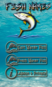 FISH NAMES 1