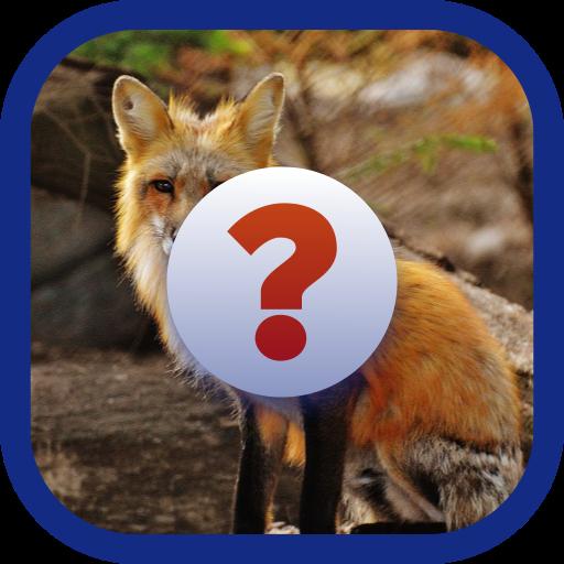 Animal Quiz (game)