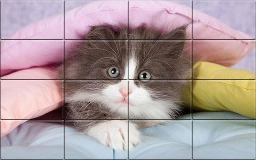 Tile Puzzle Cats apkpoly screenshots 4