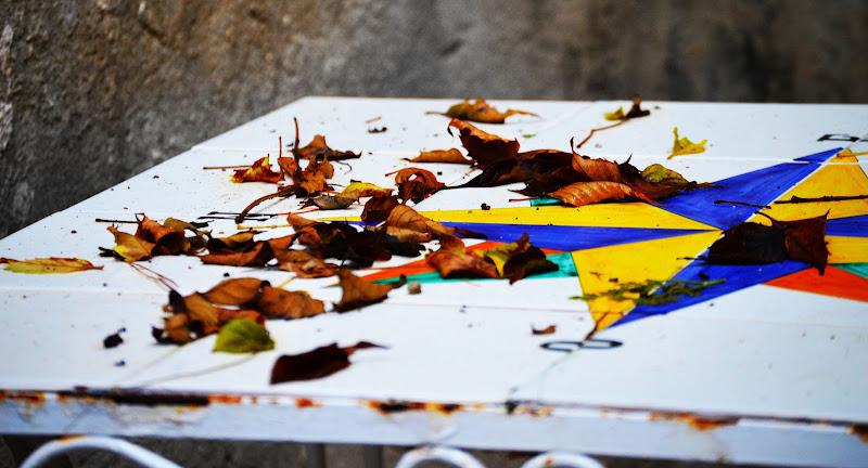 Le foglie morte di gina_todisco