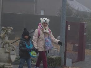 Photo: oei  wist niet dat het poolijs  al tot hier kwam  allé de ijsberen dan toch...