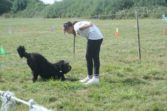 Photo: DogBasics Fun Day 2013 - Best Trick. Tilly Labradoodle finishing her routine with a nice bow.