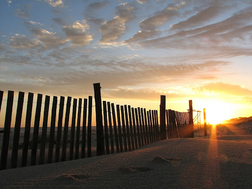 Southern Sunsets