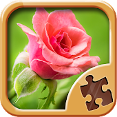Flower Puzzles Games