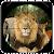 Jungle Sniper 3d file APK Free for PC, smart TV Download