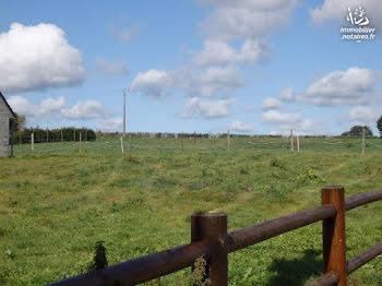 terrain à Ledinghem (62)