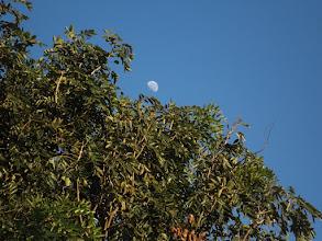 Photo: ... dabei steht noch der Mond am Himmel.