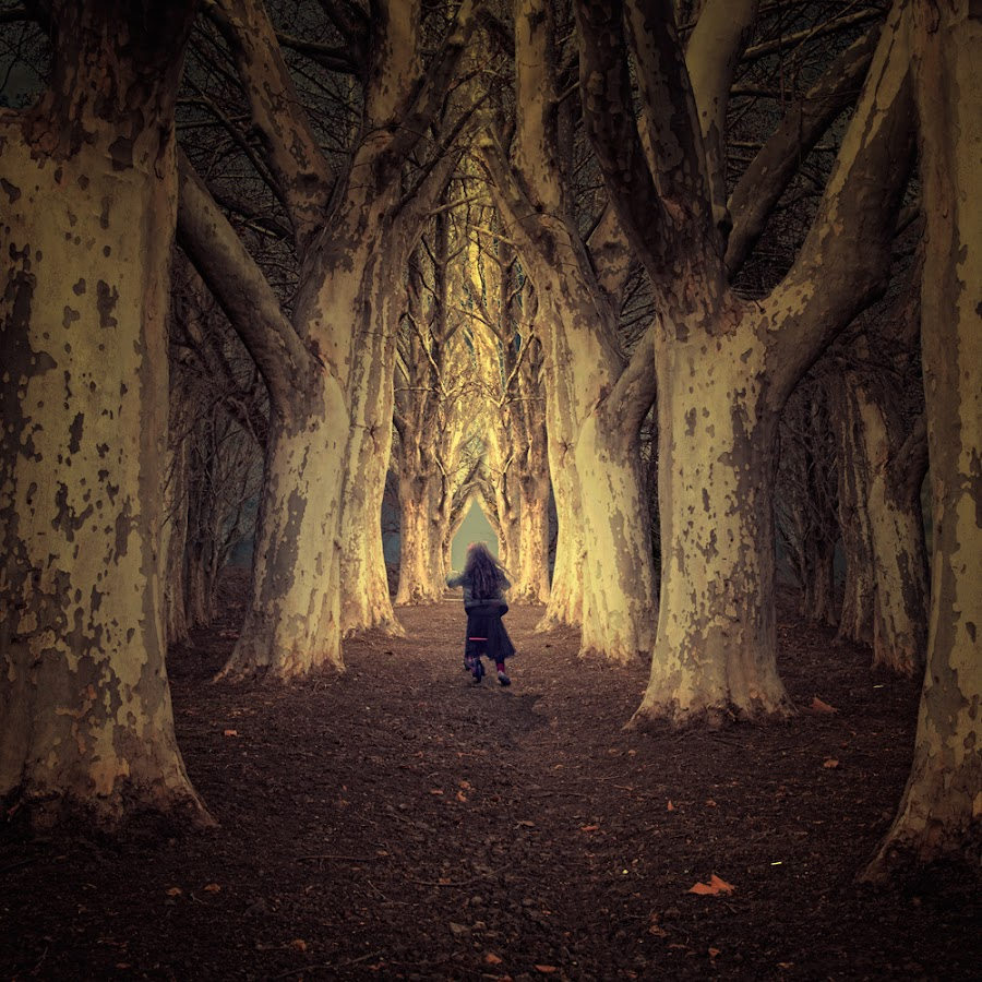 Fallow me, will be fun by Caras Ionut - Digital Art Places