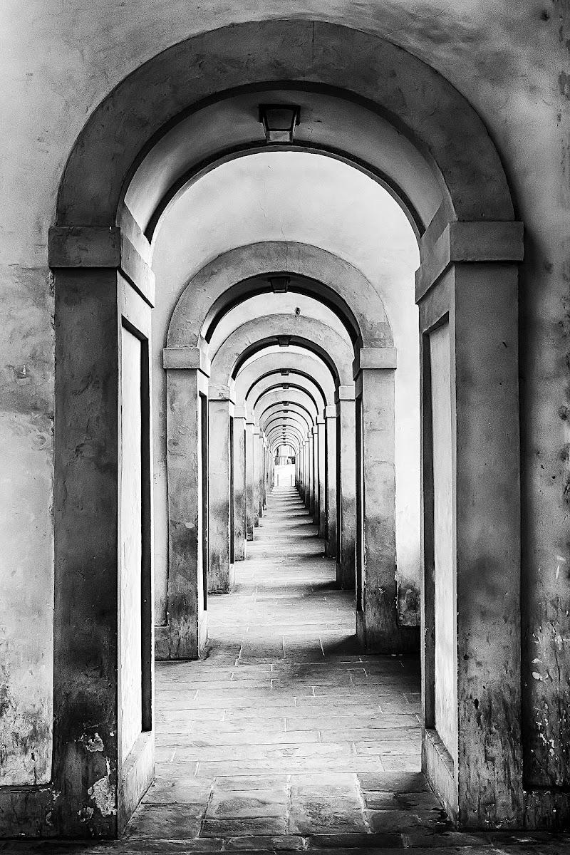 Florence di maurizio_varisco