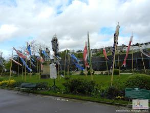 Photo: Jardin Japonais (Jardin d'Acclimatation). ©Anime Nen'kan