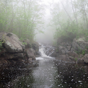 The Old Swimming Hole by Alison Gimpel - Landscapes Weather ( water, duluth_mn, fog, weather, creeks, landscapes, spring,  )