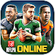 Football Heroes Pro Online (game)
