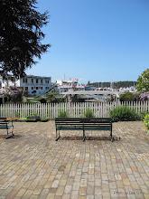 Photo: (Year 2) Day 334 - Roche Harbor #7
