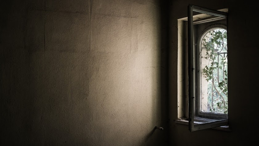 """""""Tal vez sea la esperanza que se cuela día tras día por mi ventana""""."""