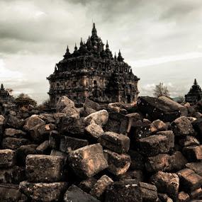 Abandoned Temple by Joni Irwanto - Buildings & Architecture Statues & Monuments ( temple, plaosan, yogyakarta, indonesia )
