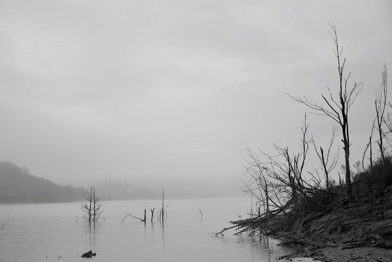 Loch Ness di s_ornella