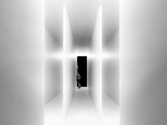White di Heisen.22