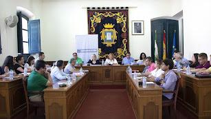 Celebración del pleno en el Ayuntamiento de Níjar.