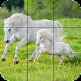 Puzzle - Beautiful Horses