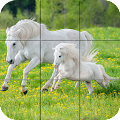 Puzzle - Beautiful Horses APK