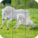 Puzzle - Beautiful Horses file APK Free for PC, smart TV Download