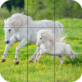 Puzzle - Beautiful Horses