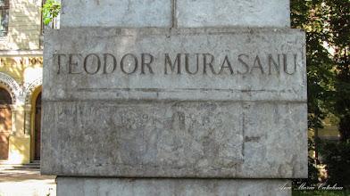 Photo: Bustul lui Teodor Murasanu - detaliu inscriptie - (2013.06.14)