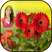HD Photo Frames - Flowers