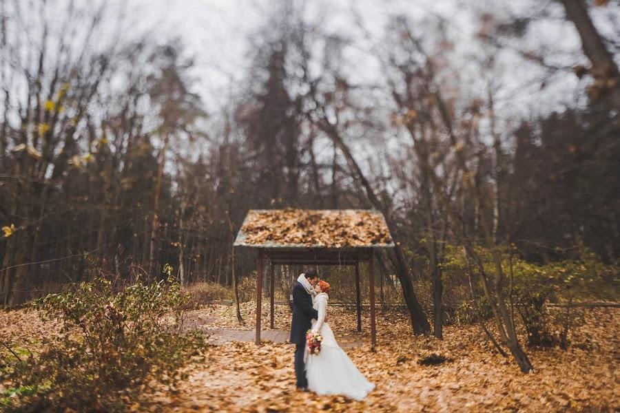 Wedding photographer Slava Semenov (ctapocta). Photo of 06.11.2014