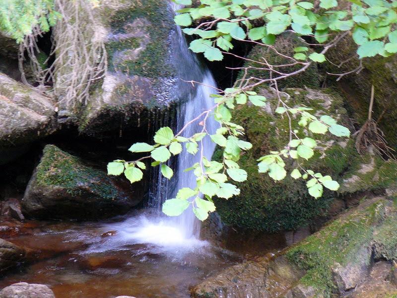 Малко водопадче в Родопите