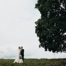 Wedding photographer Aleksandr Cherepok (sa12356ba). Photo of 14.01.2017