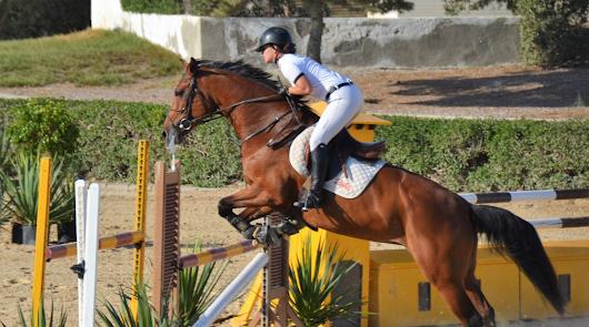 Almería celebra un gran Concurso de Saltos