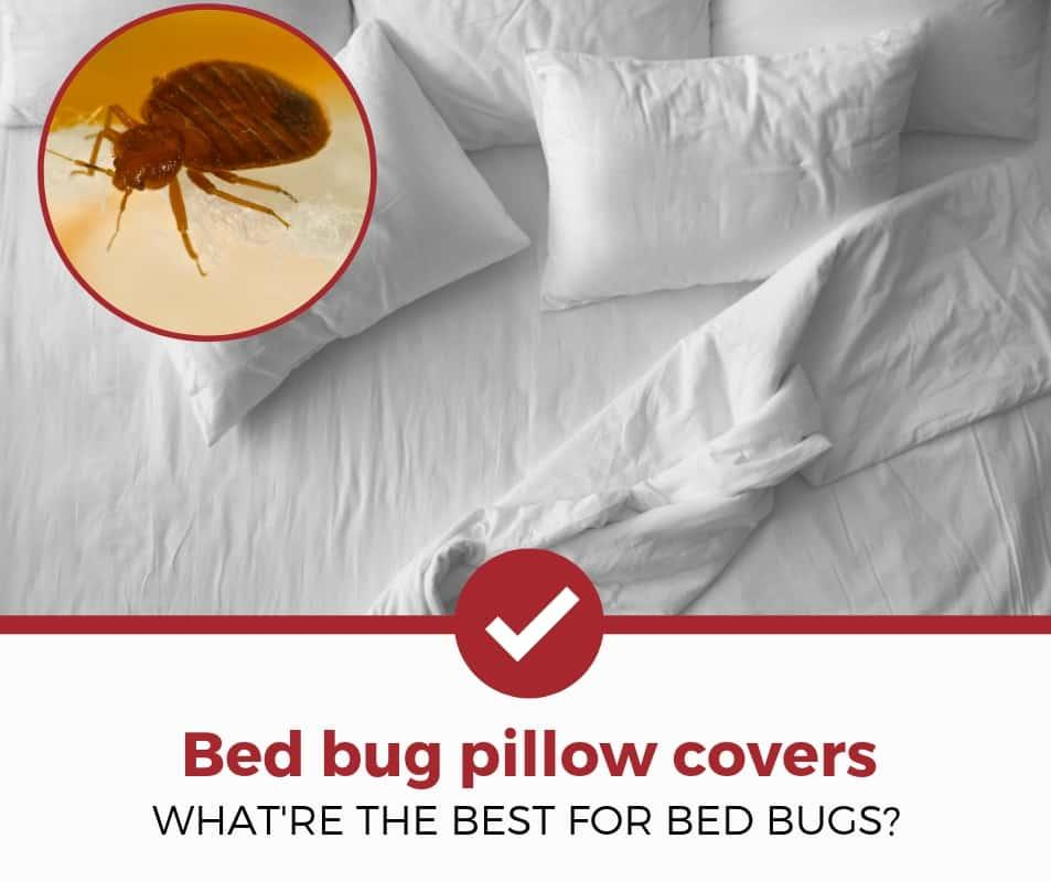 best-bed-bug-pillow-covers